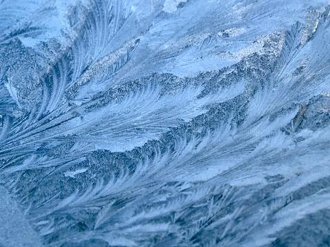 Frozen「Frosty Feathers」:スマホ壁紙(2)
