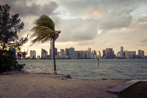 Miami「USA, Florida, beach and skyline of Miami」:スマホ壁紙(11)