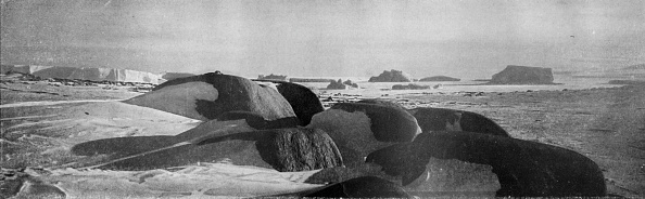 Ski Pole「Granite Blocks Planed By Ancient Glaciers At Cape Roberts」:写真・画像(5)[壁紙.com]