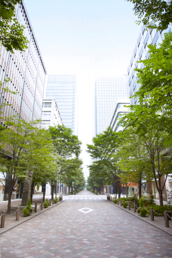 City「Trees of street lined with office buildings.」:スマホ壁紙(1)