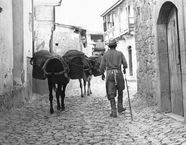 Republic Of Cyprus「Donkey Town」:写真・画像(1)[壁紙.com]