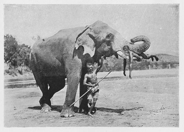 Crockery「'Maligawa Elephant and Mahouts', c1890,」:写真・画像(3)[壁紙.com]