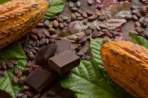 Bean「Cocoa composition」:スマホ壁紙(7)