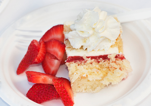 Celebration Event「Strawberry shortcake at a picnic」:スマホ壁紙(7)