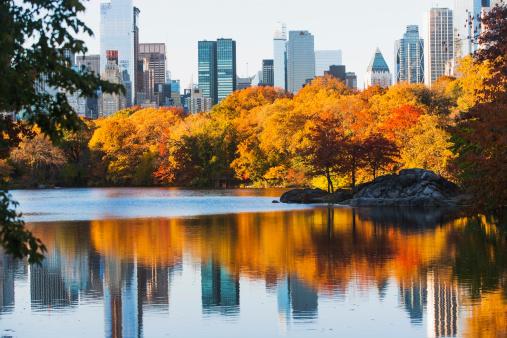 マンハッタン セントラルパーク「USA, New York State, New York City, View of Central Park in autumn」:スマホ壁紙(16)