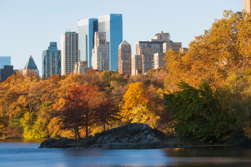 Urban Skyline「USA, New York State, New York City, View of Central Park in autumn」:スマホ壁紙(9)