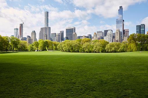Central Park - Manhattan「USA, New York State, New York City, Manhattan skyline with Central park in foreground」:スマホ壁紙(6)