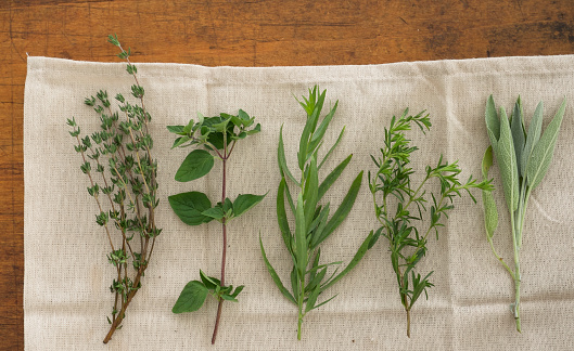 Tarragon「USA, New York State, New York City, Variation of herbs on table」:スマホ壁紙(16)