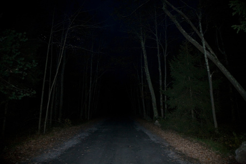 Ominous「USA, New York State Park, Minnewaska, road through forest」:スマホ壁紙(9)