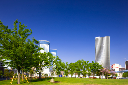 江東区「Tower Blocks and Park」:スマホ壁紙(13)