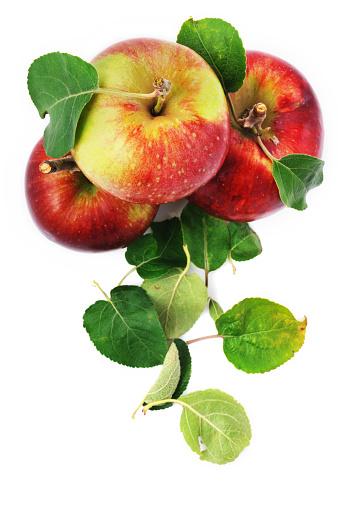 リンゴ「散乱した新鮮なリンゴと白で分離」:スマホ壁紙(18)