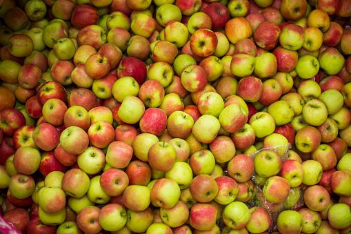 Freight Transportation「Fresh apples」:スマホ壁紙(11)