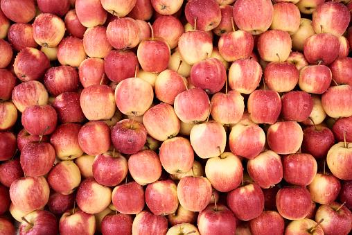 Market Stall「Fresh apples」:スマホ壁紙(12)