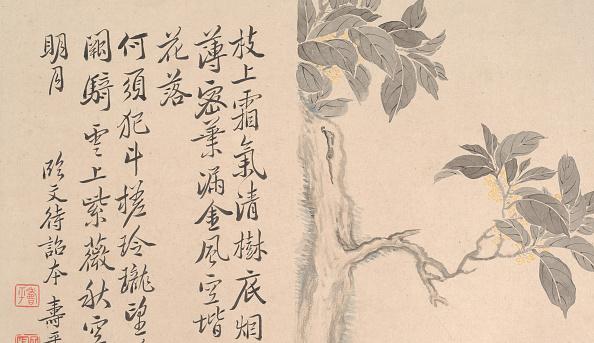 Beauty In Nature「Cassia Tree. Creator: Unknown.」:写真・画像(19)[壁紙.com]