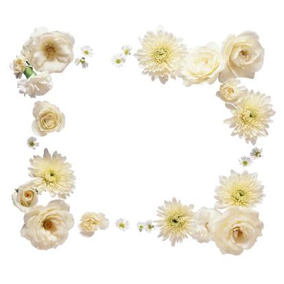 薔薇「Frame of Flowers」:スマホ壁紙(2)