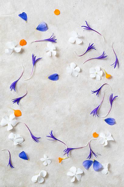 Frame of flowers, pedals of Hydrangea, Centaury and Phlox:スマホ壁紙(壁紙.com)