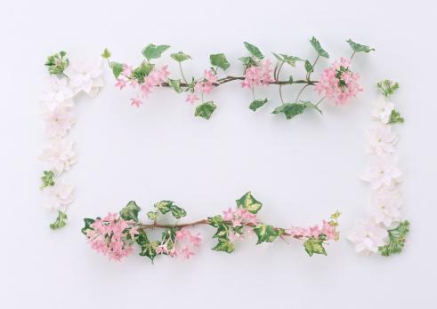 あじさい「Frame of Flower」:スマホ壁紙(15)