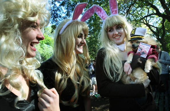 Savory Sauce「Dogs And Owners Celebrate Halloween In Tompkins Square Park」:写真・画像(13)[壁紙.com]