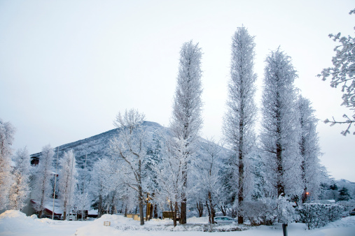 Nikko City「Chugushi in Winter」:スマホ壁紙(17)