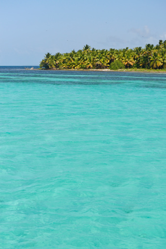 Water Surface「Turquoise water and coconuts palms on Saona Island」:スマホ壁紙(5)