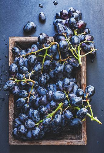 Red Grape「Purple grape」:スマホ壁紙(16)