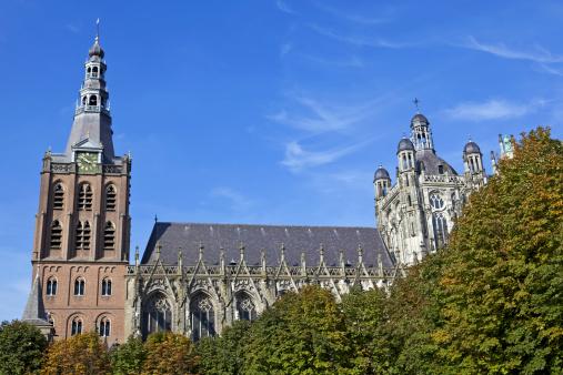 North Brabant「St. Jan's Cathedral in 's Hertogenbosch # 7 XXL」:スマホ壁紙(10)