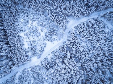 Salzkammergut「Austria, Gosau, aerial view of road through coniferous forest in winter」:スマホ壁紙(4)