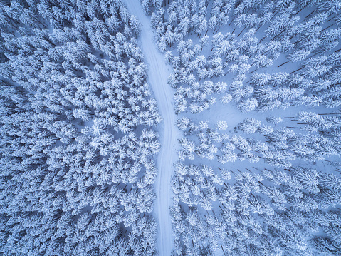 Dirt Road「Austria, Gosau, aerial view of road through coniferous forest in winter」:スマホ壁紙(14)