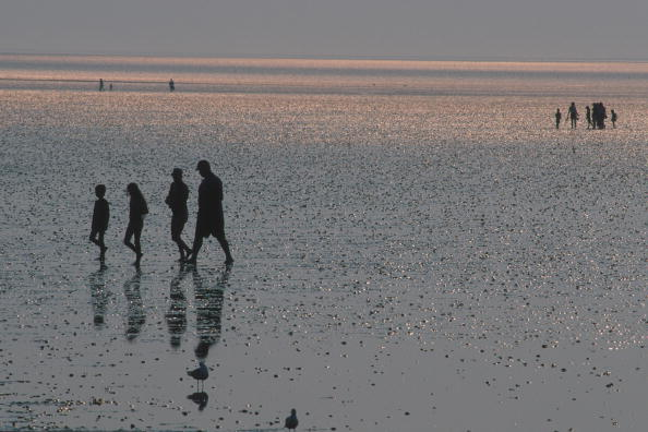 King's Lynn「Beach Silhouettes」:写真・画像(17)[壁紙.com]
