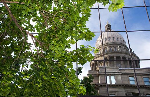 Idaho State Capitol「Boise Idaho Capitol building reflections」:スマホ壁紙(18)