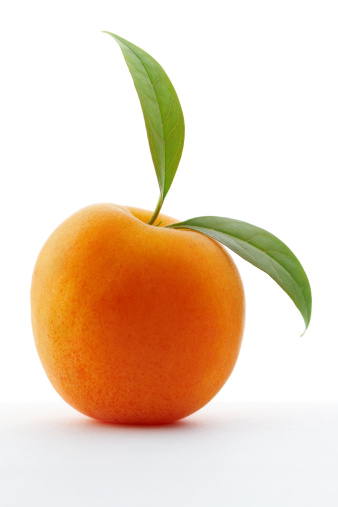 Apricot「アプリコット」:スマホ壁紙(3)