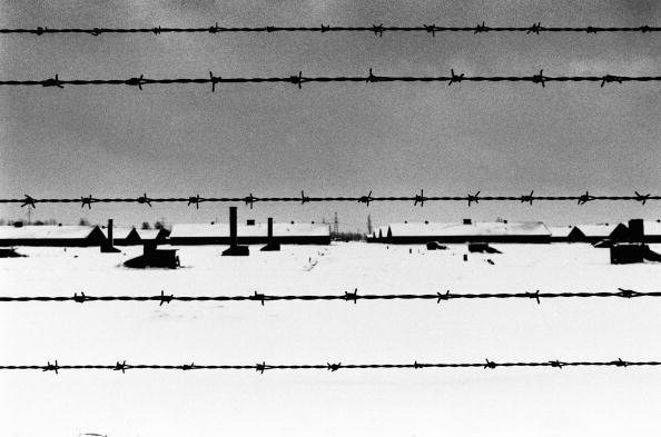 モノクロ「Auschwitz...」:写真・画像(4)[壁紙.com]