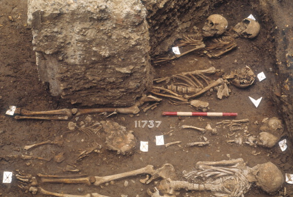 Royal Mint「The Excavation Of The Black Death Cemetery At The Royal Mint Site」:写真・画像(11)[壁紙.com]