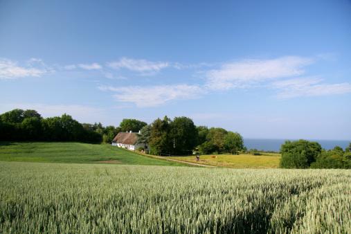Denmark「Beautiful farmland, old house and sea in Southern Jutland, Denmark」:スマホ壁紙(13)