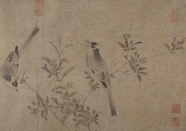 Perching「Chinese Bulbuls On Flowering Cherry-Apple. Creator: Unknown.」:写真・画像(8)[壁紙.com]