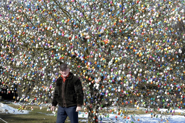 Hen「Man Decorates Tree With 10,000 Easter Eggs」:写真・画像(10)[壁紙.com]