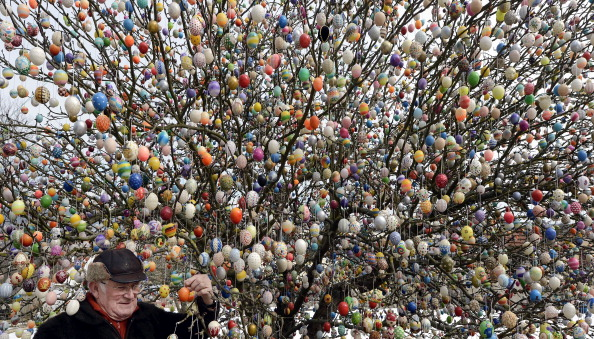 Tree「Man Decorates Tree With 10,000 Easter Eggs」:写真・画像(3)[壁紙.com]