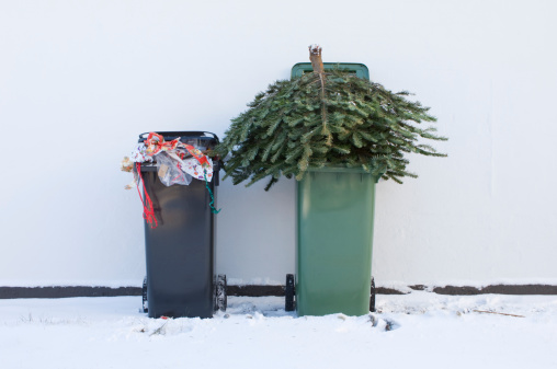 Environmental Conservation「Recycle Your Christmas Tree」:スマホ壁紙(13)
