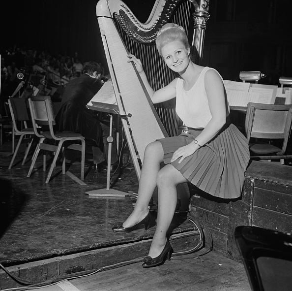 Musical instrument「Susan Drake」:写真・画像(7)[壁紙.com]