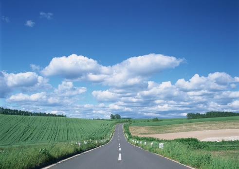 Biei Town「Road」:スマホ壁紙(8)