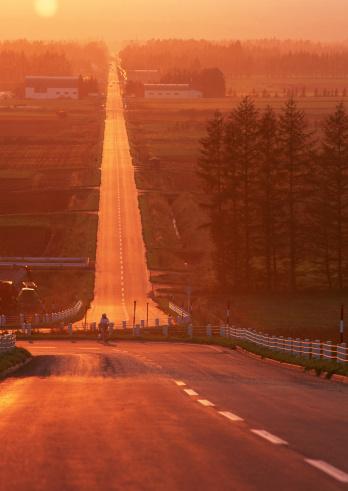 Hokkaido「Road」:スマホ壁紙(9)