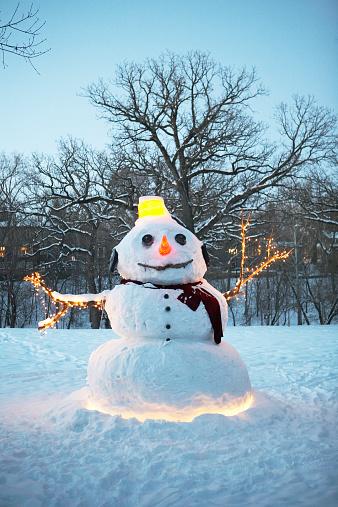 雪だるま「Giant snowman with Christmas lights」:スマホ壁紙(14)