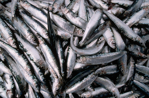 1990-1999「Herring at a Fish Market」:スマホ壁紙(9)