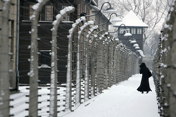 Barbed Wire「Auschwitz Prepares for 60 Years Since Concentration Camp Liberation」:写真・画像(12)[壁紙.com]