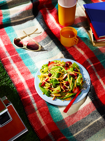 Tartan check「Salad topped with Fruit and Cheese on a Picnic Blanket」:スマホ壁紙(0)
