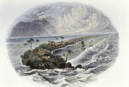 19th Century「Coral reef」:スマホ壁紙(2)