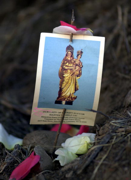 Shallow「Murdered Los Lobos Wife Found」:写真・画像(16)[壁紙.com]