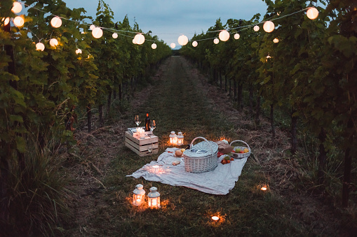 Picnic「Food and light arranged in vineyard for a picnic at night」:スマホ壁紙(0)