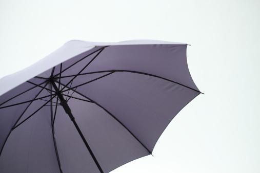 Umbrella「Opened Umbrella」:スマホ壁紙(4)