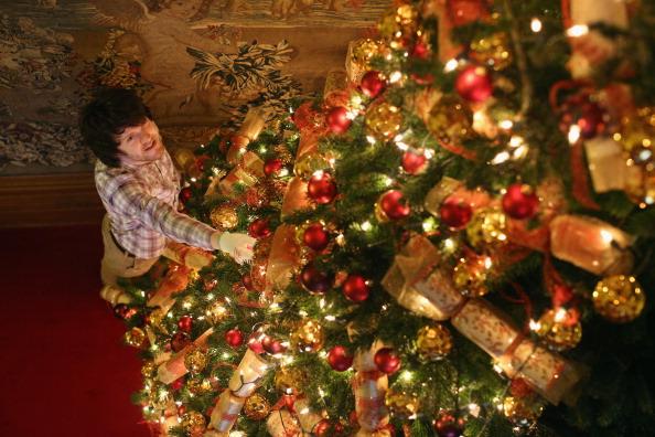 Christmas Tree「Waddesdon Manor Prepares For Christmas」:写真・画像(8)[壁紙.com]